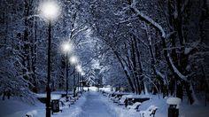 Зимний парк городской это рай для влюблённых! И вечерней порой я спешу старый парк По аллеям брожу меж заснеж клёнов