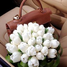 #flowers  #tulips  #hermes bag