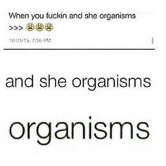 Omg  XD