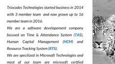 Triocodes Technologies Pvt Ltd