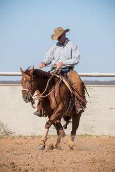 Cowboy Pics, Cowboy Pictures, Cutting Horses, Reining Horses, Westerns, Birds, Amazing, Animals, Western Horse Riding