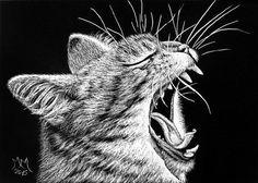 ORIGINAL ACEO Scratchboard Art  ROAR Cat Kitty Feline Animal Feline Pet Scratch #Miniature