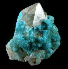 A fine aesthetic combination specimen pretty powder blue clusters