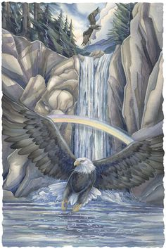 """Saced Waters... Sacred Sky... A Season of Eagles"" par Jody Bergsma"