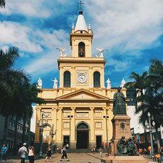 Quando você tem os melhores colaboradores do blog! @nfrezende nossa colaboradora e super advogada registrou essa foto linda da Catedral Metropolitana de Campinas, SP.   Mais uma da série amamos igrejas!