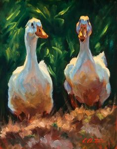 "Cheri Christensen ""A Couple of Quacks"" Farm Paintings, Animal Paintings, Animal Drawings, Duck Art, Southwestern Art, Cottage Art, Chicken Art, Bird Artwork, Art Pictures"