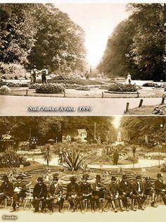 V tom čase jeden z najkrajších parkov v strednej Europe dnes už len fragment z toho krásna o pokoja a aj to zničí ďalšia megalomanská výstavba ( v pláne je v jeho bezprostrednej blízkosti postaviť hotel ) moji rodičia s mojimi staršími bratmi za prvej ČSR často chodili tam relaxovať a v ich pozostalosti zanechali veľa fotiek ktoré svedčia o tom že aj v tej dobe mal park svoju nadštandardnú úroveň Bratislava, Dolores Park, Sad, Travel, Viajes, Destinations, Traveling, Trips