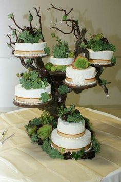 My beautiful succulent wedding cake! Love it!!!!!