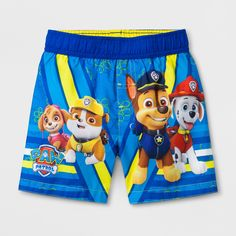 Toddler Boys' Paw Patrol Swim Trunks - Blue 5T