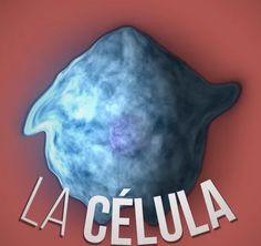 Crea y aprende con Laura: Ciencia Express. Vídeos de forma breve y divertida con las ideas fundamentales de la ciencia.