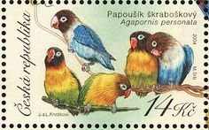 Yellow-collared Lovebird stamps - mainly images - gallery format