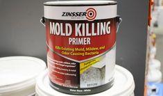 Zinsser Mold Killing Primer
