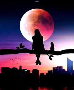 Image could contain: sky, cloud, exterior and nature - love story . - Image could contain: sky, cloud, exterior and nature – love story # animals … – – # Exterio - Night Sky Wallpaper, Pop Art Wallpaper, Painting Wallpaper, Scenery Wallpaper, Cute Wallpaper Backgrounds, Silhouette Photography, Moon Photography, Silhouette Art, Alphabet Photography