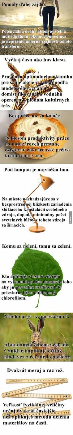 Slovenské porekadlá trochu inak