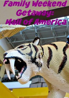 Here are my recommendations on how to spend a long theme park weekend at the Mall of America - full of lots of big and little kid fun,