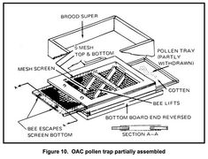 Do you want to be a beekeeper and looking for ideas or plans for langstroth, top-bar, or warre beehives? Here are 36 fee DIY bee hive plans for you. Bee Hive Plans, Bee Boxes, Learn Faster, Mesh Screen, Make It Work, Queen Bees, Bee Keeping, How To Become, How To Plan