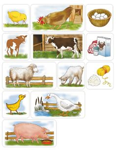 Domáce zvieratá - úžítok Farm Activities, Animal Activities, Preschool Themes, Infant Activities, Classroom Themes, Farm Animals, Animals And Pets, Kids Math Worksheets, Animal Puzzle