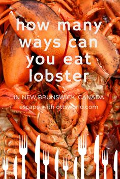 I was on a New Brunswick, Canada lobster mission - try all the different ways they prepare and serve lobster. From pizza to poutine to lattes - here's what I found. Travel in North America. Alberta Canada, Canada Vancouver, New Brunswick Canada, Drinking Around The World, Mouth Watering Food, Poutine, Restaurant Guide, Travel Maps, Travel Destinations