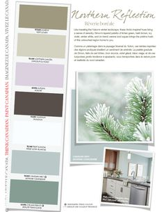 Like traveling the Yukon's winter landscape, these Arctic-inspired hues bring a sense of serenity. Simon's layered palette of lichen green, bark brown, icy violet, winter white, and on-trend, serene iced aquas brings the pristine hush of this untouched region home to you. #BeautiTone Paint exclusive colours.