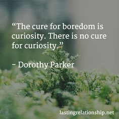 """""""The cure for boredom is curiosity. There is no cure for curiosity. Goethe Werther, Value Quotes, Barbara Kingsolver, Now Faith Is, Life Moments, Negative Thoughts, Business Quotes, Monday Motivation, Quotes Motivation"""