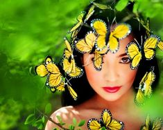 Beautiful colorful pictures and Gifs: Imagenes de Butterfly (Mariposas) Gifs
