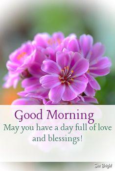 Good Morning... Good Morning Sunday Images, Good Morning Nature, Good Morning Beautiful Images, Beautiful Flowers Pictures, Good Morning Texts, Good Morning Flowers, Good Morning Greetings, Morning Pictures, Morning Pics