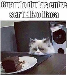 FELIZ !! #memes #chistes #chistesmalos #imagenesgraciosas #humor http://www.megamemeces.com/memeces/imagenes-de-humor-vs-videos-divertidos