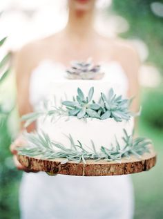 Wedding Cake with Succulents + Crate and Barrel Wooden Charger  |  Virginia + Destination Wedding Photographer (Robyn Middleton Fine Art Photography)
