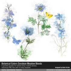Botanical Colors Cerulean Meadow Blends watercolor painted botanicals with butterflies for instant artistry #designerdigitals