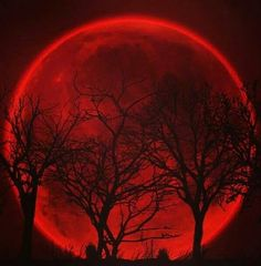 """Red Moon ;p ; ***Can't you just see this one!!! """"Blood Moon"""", I already want to read it, lol :D"""