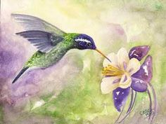 White-eared Hummingbird painting, art by Carol May