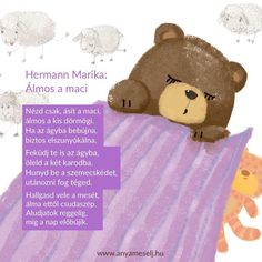 Baba, Teddy Bear, Toys, Animals, Instagram, Activity Toys, Animales, Animaux, Clearance Toys