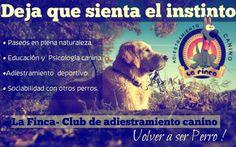 Deja que sienta el instinto. Volver a ser perro! Campamento - Residencia Canino (Alcayna, Molina de Segura, Murcia.    http://lafinca-clubdeadiestramientocanino.com