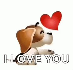 The perfect Dog ILoveYou Kiss Animated GIF for your conversation. Love You Gif, Dont Love Me, Cute Love, My Love, Kiss Animated Gif, Emotion Faces, Emoji Love, Heart Gif, Qoutes About Love