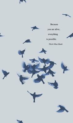"""""""Because you are alive, everything is possible."""" ~Thich Nhat Hanh ..*"""