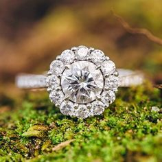 Round diamond | Large halo pave reverse tapered channel pave platinum setting | Photo by www.dyannajoyphotography.com