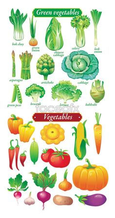 Fruits and vegetables, -           Learn and improve your English language with our FREE Classes. Call Karen Luceti  410-443-1163  or email kluceti@chesapeake.edu to register for classes.  Eastern Shore of Maryland.  Chesapeake College Adult Education Program. www.chesapeake.edu/esl.