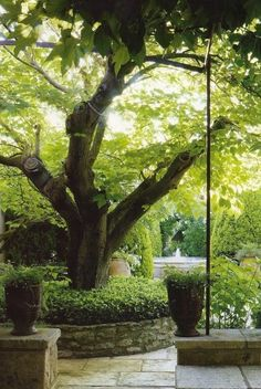 put a small tree down bottom l h s at top of patio wall to create a near focal point to look thro . ads depth to garden raisedgardenwall raisedgardenideas raisedgardendesign raisedgardenpictures