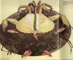 Crab Served In The Shell. @_@ This could be one of the most horrifying things I've ever seen...