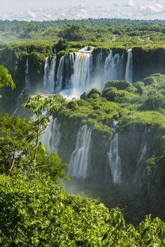 Iguazu Waterfall Through Trees - Wall Mural & Photo Wallpaper - Photowall