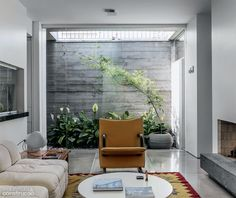 Reform integrates home 70s green area to the outside - Home