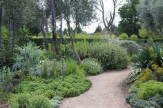 Lambley-nursery-green-path.jpg (5184×3456)