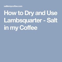 How to Dry and Use Lambsquarter - Salt in my Coffee