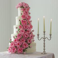 Tort Silvia Fondant, Cake, Desserts, Tailgate Desserts, Deserts, Kuchen, Postres, Dessert, Gum Paste