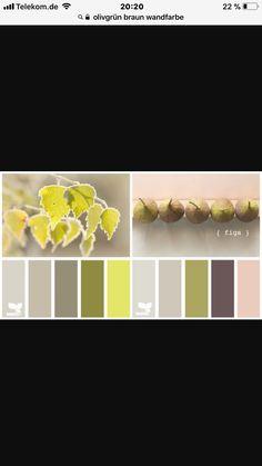 Wandfarbe Olivgrün Dunkel Wände Streichen Beruhigende Farbe | Wohnung |  Pinterest