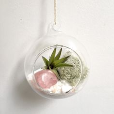 Mother's Day is just over a week away! If you're looking for something a little different to the usual bunch of flowers how about an air plant terrarium personalised with your mama's birthstone or featuring a beautiful Rose Quartz to show your unconditional LOVE (link in bio) Use code MOTHERS17 for 20% off all orders until midnight on Monday