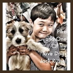 Cute Jack Russel Terrier and My Cute Son