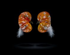 these used to be tomatoes...but now they just look like blown up maggots. gross    The 'One Third' photo series by Klaus Pichler: an effort to raise awareness of global waste