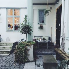 solveigsdotter's photo on Instagram