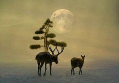 Il cielo partorì il sogno e le sue nevi le sue chiome ai freddi. Le renne posarono i passi del parto e le orme s'ormarono di mare spumato. Come quest'amare fioccato di orizzonti. Tra terra e tempi. Buon Natale in #poesia <3